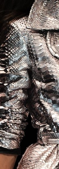 Metallic reptile